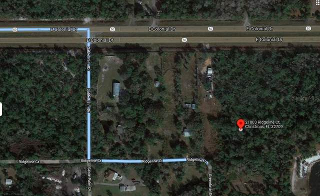 21803 Ridgeline Court, Christmas, FL 32709 (MLS #O5981021) :: Everlane Realty