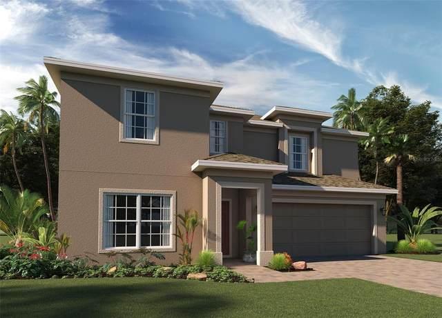 686 Campo Lane, Davenport, FL 33837 (MLS #O5981042) :: Bustamante Real Estate