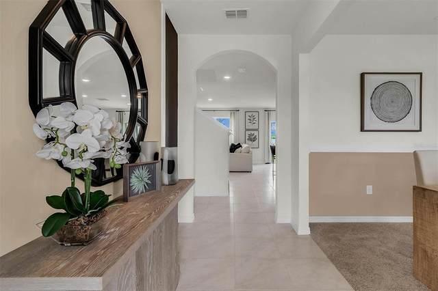 1577 Tali Lane, Mount Dora, FL 32757 (MLS #O5981082) :: The Truluck TEAM