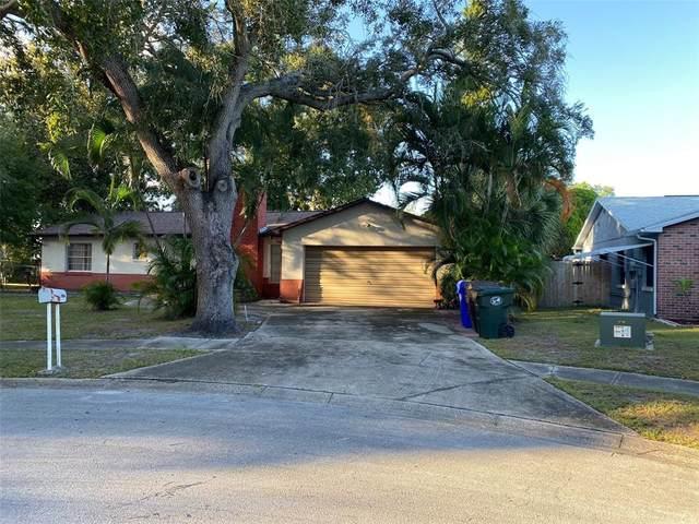 2422 Debra Court, Kissimmee, FL 34744 (MLS #O5981214) :: Expert Advisors Group