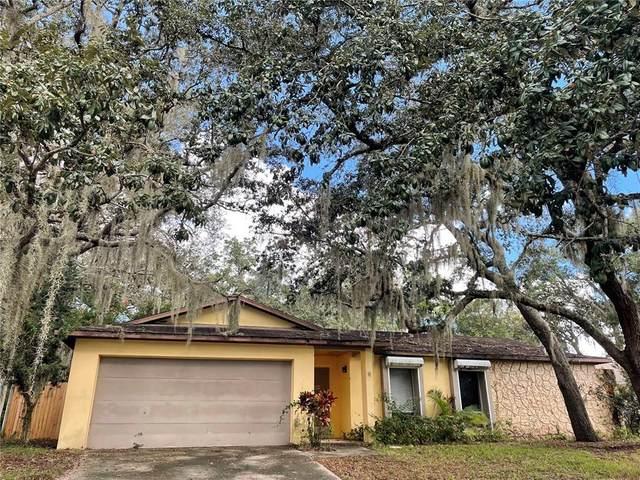 10115 Winder Trail, Orlando, FL 32817 (MLS #O5981215) :: Vivian Gonzalez | Ocean Real Estate Group, LLC