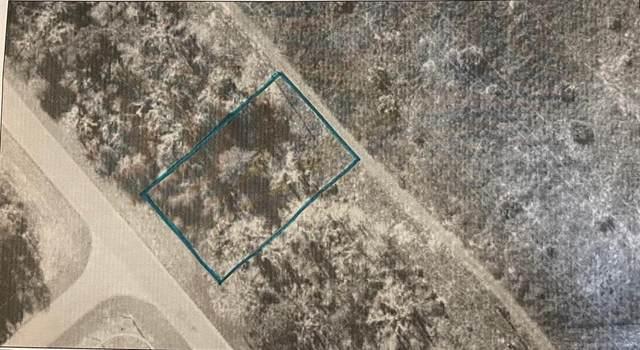 SW 59TH AVE Road, Ocala, FL 34471 (MLS #O5981279) :: Prestige Home Realty