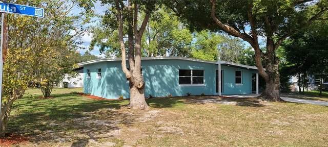 1000 Ursula Street, Ocoee, FL 34761 (MLS #O5981347) :: Kelli Eggen at RE/MAX Tropical Sands