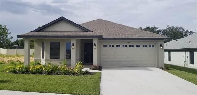 1041 Citrus Landings Boulevard, Davenport, FL 33837 (MLS #O5981374) :: Bustamante Real Estate