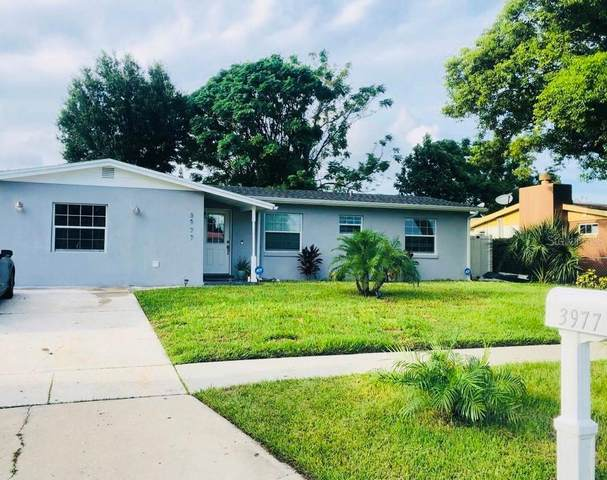 3977 Kingsport Drive, Orlando, FL 32839 (MLS #O5981415) :: Memory Hopkins Real Estate