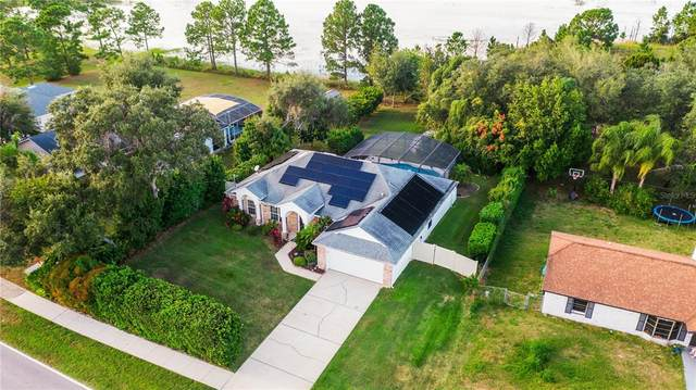 2616 Newmark Drive, Deltona, FL 32738 (MLS #O5981451) :: Cartwright Realty