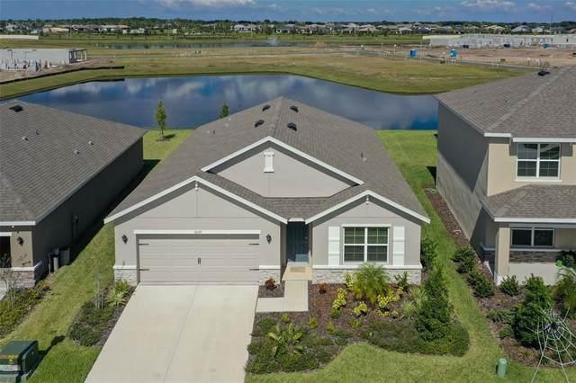 17127 Harvest Moon Way, Bradenton, FL 34211 (MLS #O5981539) :: Keller Williams Suncoast