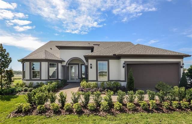 5600 Barletta Drive, Saint Cloud, FL 34771 (MLS #O5981563) :: Vacasa Real Estate