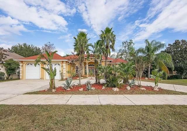 17429 Magnolia View Drive, Clermont, FL 34711 (MLS #O5981628) :: Lockhart & Walseth Team, Realtors