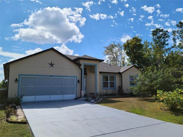1110 Lavaur Court, Kissimmee, FL 34759 (MLS #O5981645) :: Orlando Homes Finder Team
