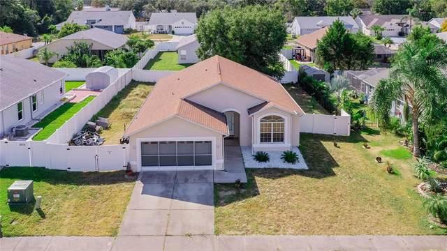 10404 Ashview Lane, Hudson, FL 34667 (MLS #O5981691) :: Keller Williams Realty Peace River Partners