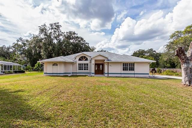 2364 Josefina Drive, Kissimmee, FL 34744 (MLS #O5981765) :: SunCoast Home Experts