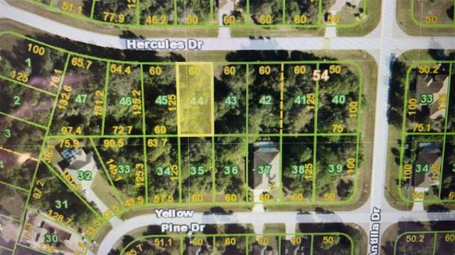 179 Hercules Drive, Rotonda West, FL 33947 (MLS #O5981942) :: Stellar Home Sales