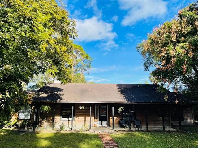 196 Linda Sue Drive, Lake Helen, FL 32744 (MLS #O5982118) :: Future Home Realty
