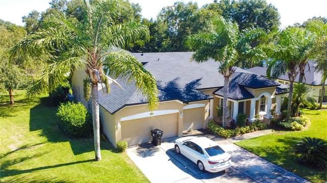 889 Palm Oak Drive, Apopka, FL 32712 (MLS #O5982301) :: Century 21 Professional Group