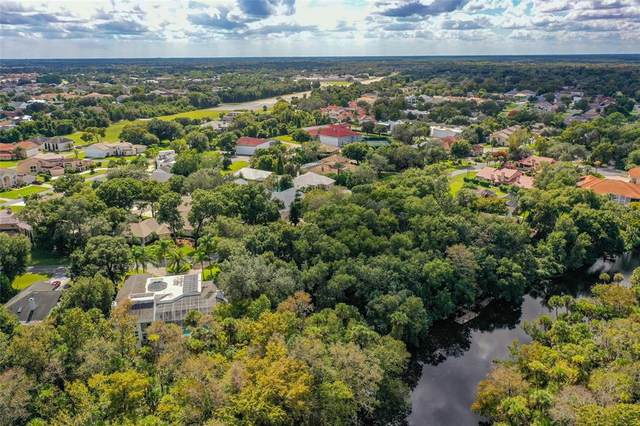 2584 E Spruce Creek Boulevard, Port Orange, FL 32128 (MLS #O5982324) :: RE/MAX Local Expert