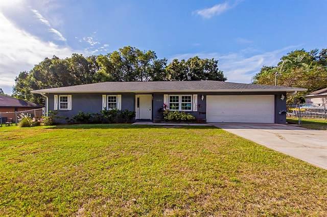 1059 Walt Williams Road, Lakeland, FL 33809 (MLS #O5982501) :: Century 21 Professional Group