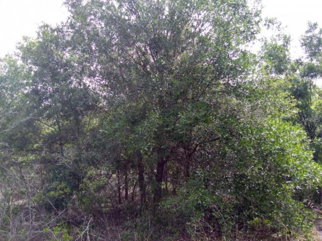14127 NE 18Th Avenue, Okeechobee, FL 34972 (MLS #OK0212559) :: Mark and Joni Coulter | Better Homes and Gardens