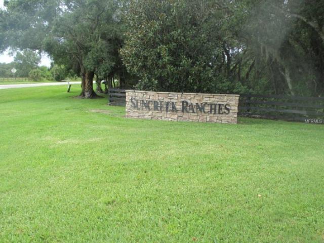 13149 SE 56Th Circle, Okeechobee, FL 34974 (MLS #OK0212711) :: The Duncan Duo Team