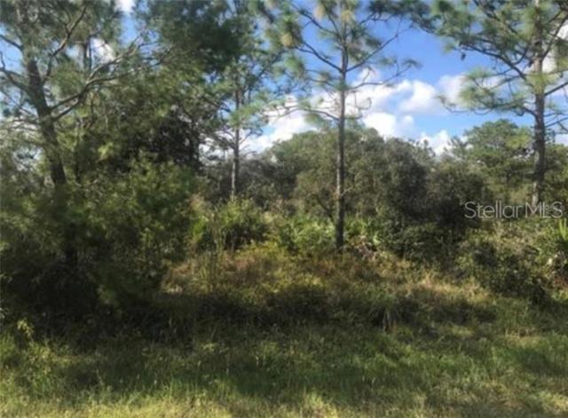 35300 HWY 441 N, Okeechobee, FL 34972 (MLS #OK218218) :: The Duncan Duo Team