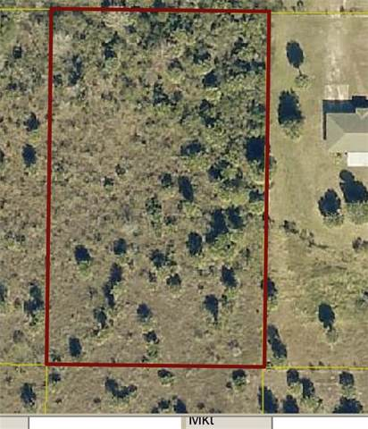 20626 NW 286TH Street, Okeechobee, FL 34972 (MLS #OK218490) :: Cartwright Realty