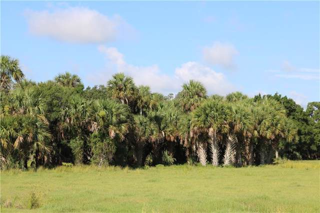 19505 NW 176TH Avenue, Okeechobee, FL 34972 (MLS #OK218511) :: Cartwright Realty