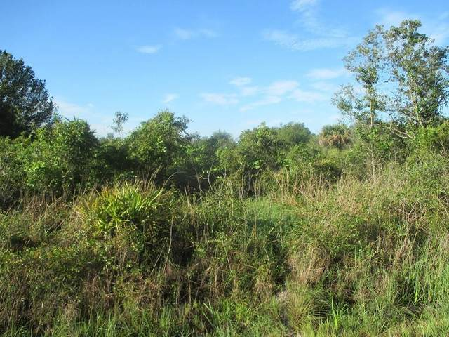 19948 NW 272ND Street, Okeechobee, FL 34972 (MLS #OK219061) :: Bustamante Real Estate