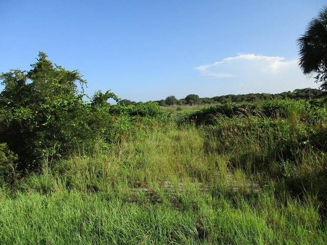 19885 NW 264TH Street, Okeechobee, FL 34972 (MLS #OK219135) :: Alpha Equity Team