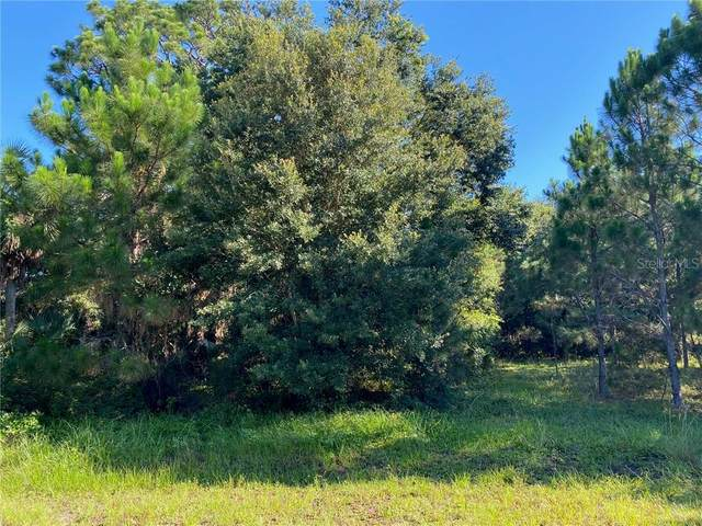 2851 NE 58TH Drive, Okeechobee, FL 34972 (MLS #OK219268) :: Alpha Equity Team