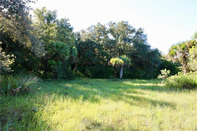 20731 NW 288TH Street, Okeechobee, FL 34972 (MLS #OK219385) :: Premium Properties Real Estate Services