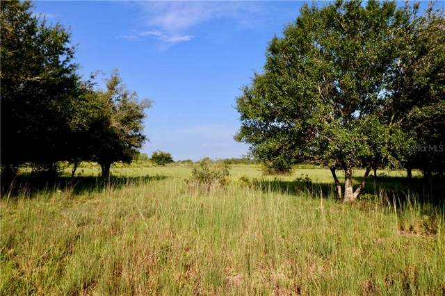 SE Langfang Avenue, Arcadia, FL 34266 (MLS #OK219794) :: Young Real Estate