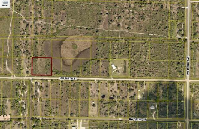 19981 NW 304TH Street, Okeechobee, FL 34972 (MLS #OK220120) :: Everlane Realty