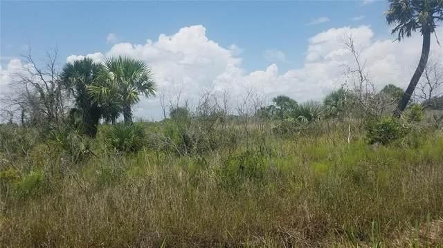 290 Street, Okeechobee, FL 34972 (MLS #OK220405) :: Cartwright Realty