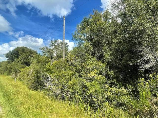 19423 NW 286TH Street, Okeechobee, FL 34972 (MLS #OK220619) :: Team Bohannon
