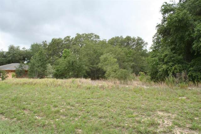 0 SE Hwy 441, Summerfield, FL 34491 (MLS #OM519296) :: Lockhart & Walseth Team, Realtors