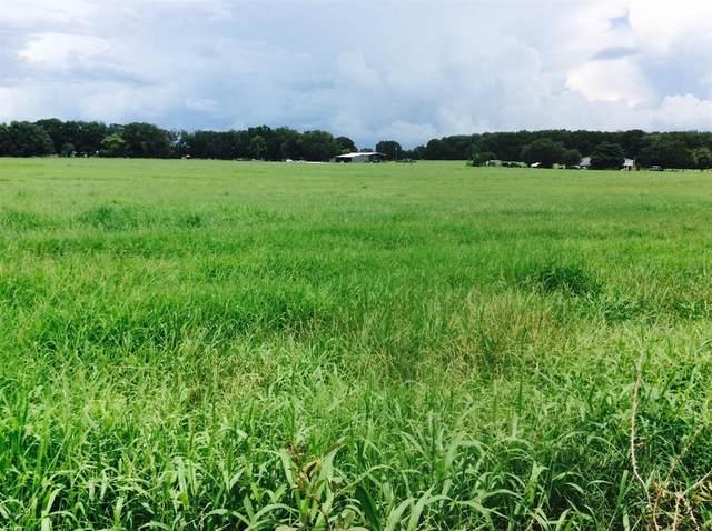 3789 NE 97th Street Road, Anthony, FL 32617 (MLS #OM520473) :: Better Homes & Gardens Real Estate Thomas Group