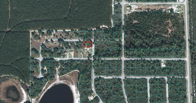 00 Malauka Terrace, Ocklawaha, FL 32179 (MLS #OM523091) :: Everlane Realty
