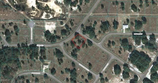 00 Bay Place, Ocklawaha, FL 32179 (MLS #OM523095) :: Premier Home Experts