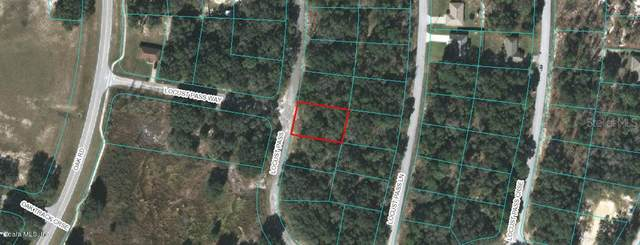 00 Locust Pass, Ocala, FL 34472 (MLS #OM523381) :: Young Real Estate