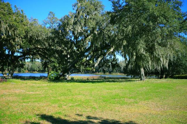 5280 SW 7th Avenue Road, Ocala, FL 34471 (MLS #OM530560) :: Better Homes & Gardens Real Estate Thomas Group