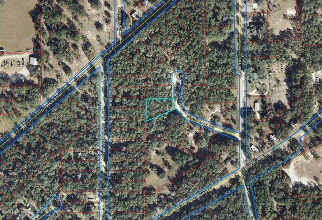 000 Palm Drive, Bronson, FL 32621 (MLS #OM536476) :: Griffin Group