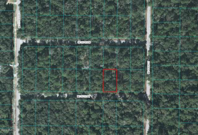0 NE 237 Place, Fort Mccoy, FL 32134 (MLS #OM537358) :: Team Buky