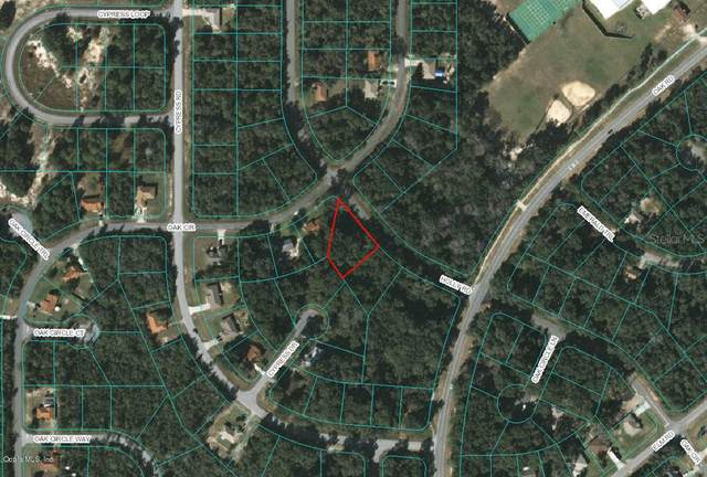 0 Holly Road, Ocala, FL 34472 (MLS #OM537505) :: Zarghami Group