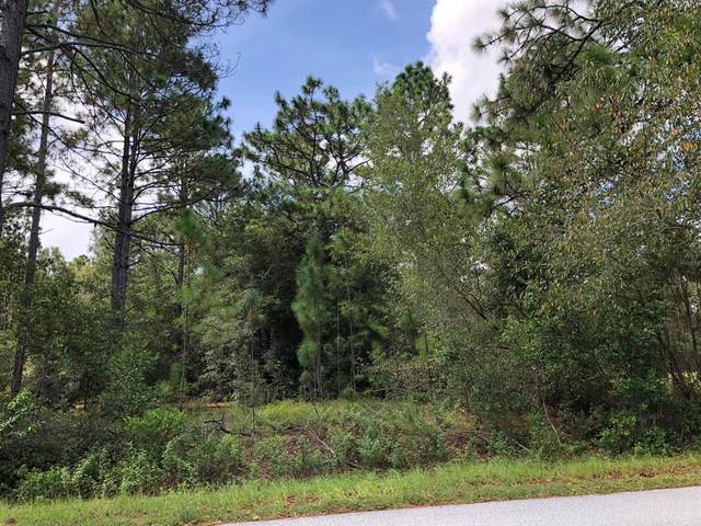 00 SW Audubon Avenue, Dunnellon, FL 34431 (MLS #OM540818) :: Better Homes & Gardens Real Estate Thomas Group