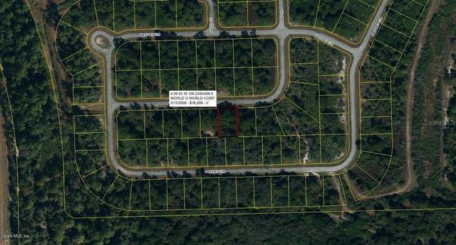 533 Spray Drive, Port Labelle, FL 33935 (MLS #OM541159) :: Southern Associates Realty LLC