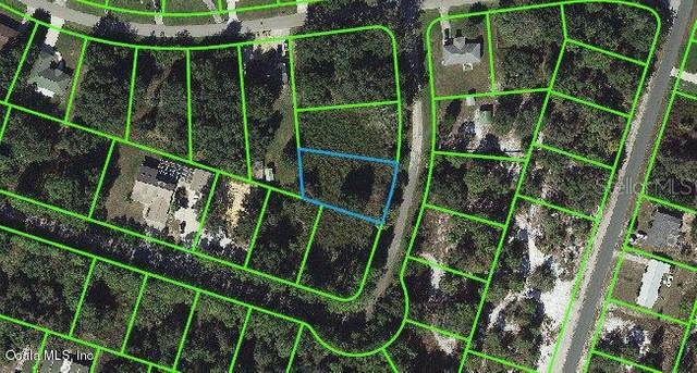 3125 Bluebell Road, Lake Placid, FL 33852 (MLS #OM541253) :: Premium Properties Real Estate Services
