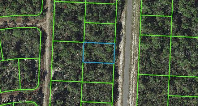 830 Wildflower Street, Lake Placid, FL 33852 (MLS #OM541255) :: Alpha Equity Team