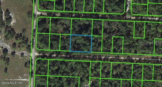 3253 Michele Avenue, Lake Placid, FL 33852 (MLS #OM541257) :: Alpha Equity Team
