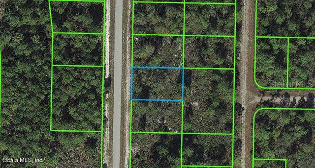 1129 Western Boulevard, Lake Placid, FL 33852 (MLS #OM541258) :: The Lersch Group
