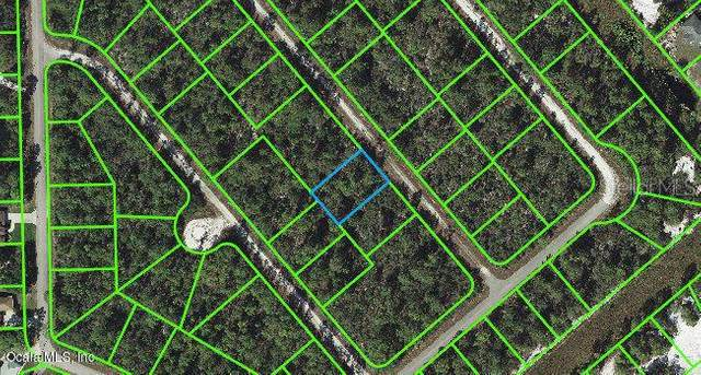 536 Madison Place, Lake Placid, FL 33852 (MLS #OM541259) :: RE/MAX Local Expert